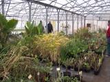 effets de serres agricoles Calmel Pretamo serre agricole